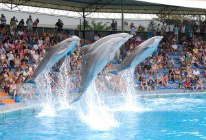 Zoo Marine Albufeira