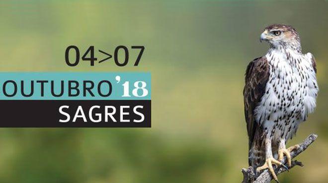 birds algarve POrtugal