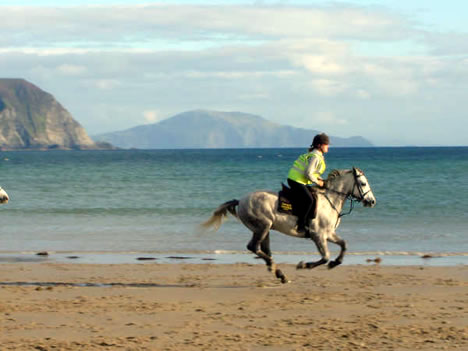 Horse Riding Algarve