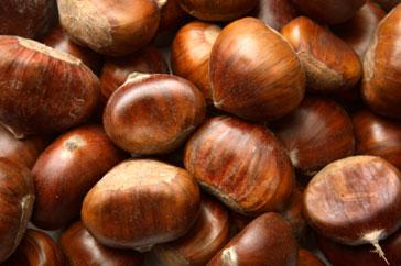 Chestnuts Algarve