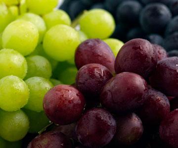 Grapes Algarve