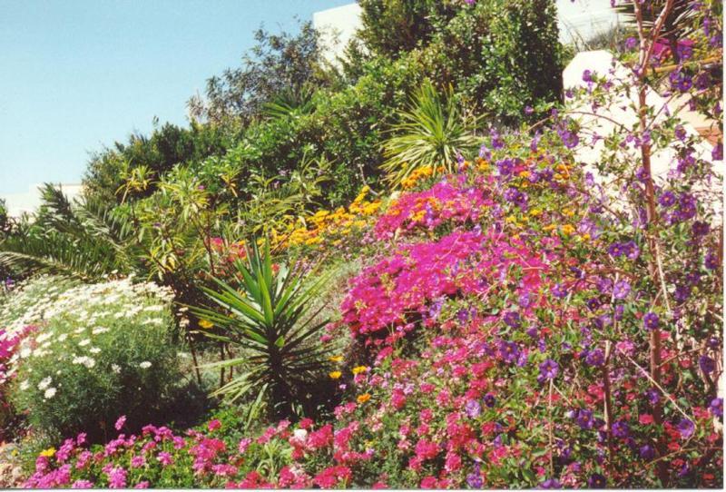 Nature Algarve
