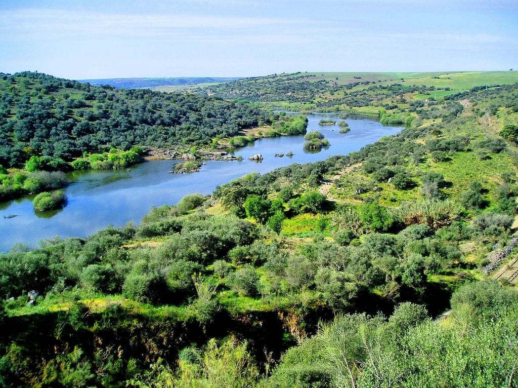 Guardiana River Algarve